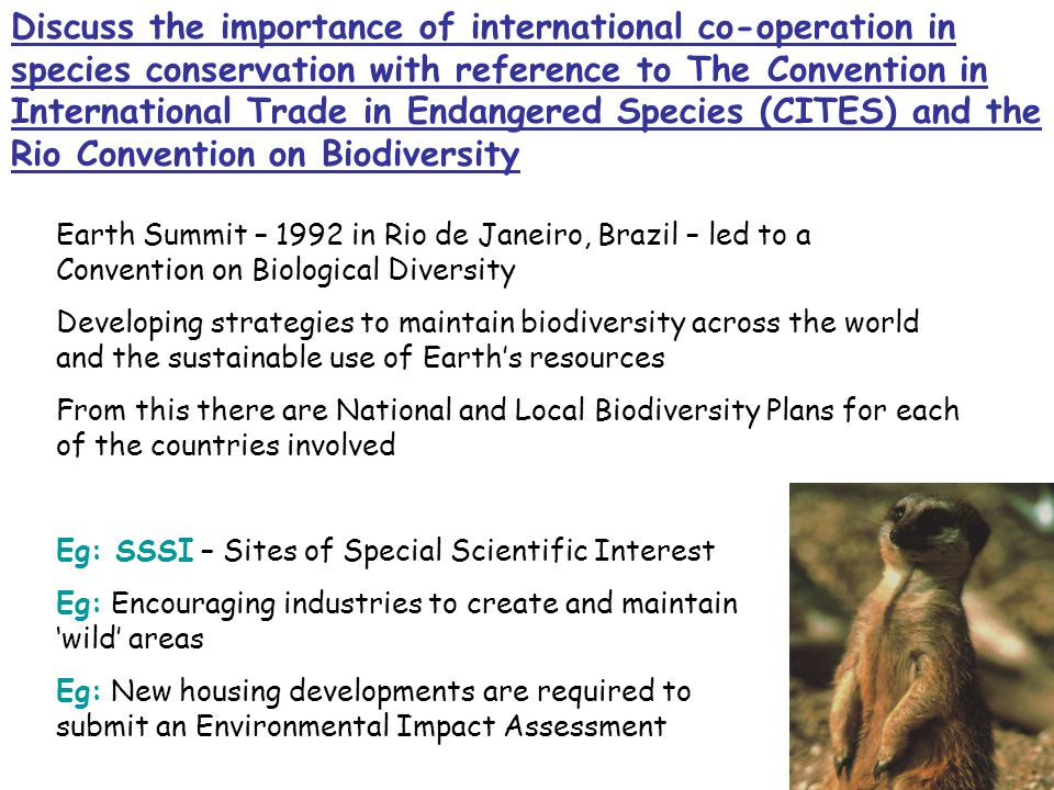 Discuss the importance of international co-operation in species conservation with reference to The Convention in International Trade in Endangered Species (CITES) and the Rio Convention on Biodiversity Earth Summit – 1992 in Rio de Janeiro, Brazil – led to a Convention on Biological Diversity Developing strategies to maintain biodiversity across the world and the sustainable use of Earth's resources From this there are National and Local Biodiversity Plans for each of the countries involved Eg: SSSI – Sites of Special Scientific Interest Eg: Encouraging industries to create and maintain 'wild' areas Eg: New housing developments are required to submit an Environmental Impact Assessment
