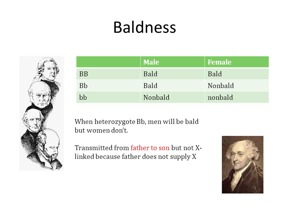 Baldness MaleFemale BBBald BbBaldNonbald bbNonbaldnonbald When heterozygote Bb, men will be bald but women don't. Transmitted from father to son but n