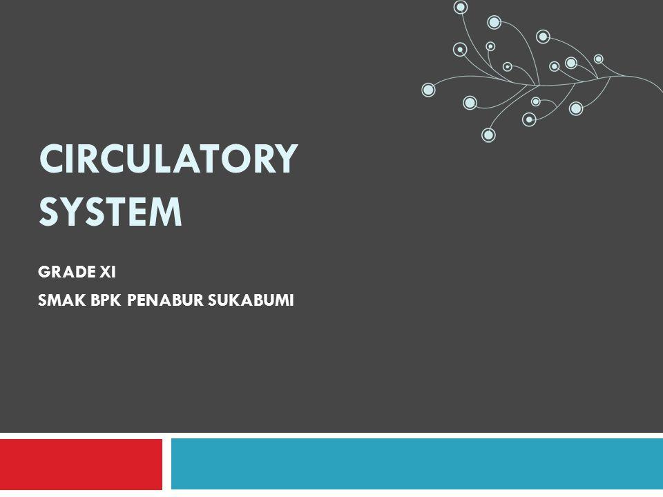 CIRCULATORY SYSTEM GRADE XI SMAK BPK PENABUR SUKABUMI