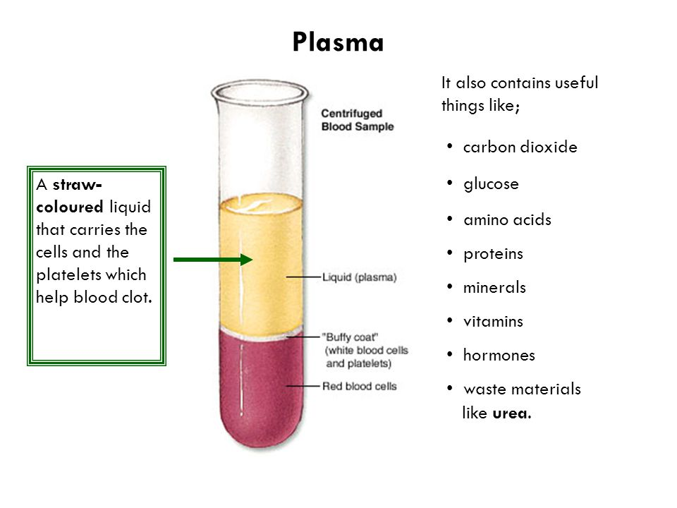 Plasma A straw- coloured liquid that carries the cells and the platelets which help blood clot.