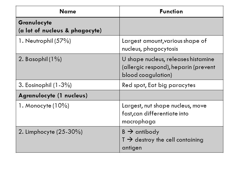 NameFunction Granulocyte (a lot of nucleus & phagocyte) 1.