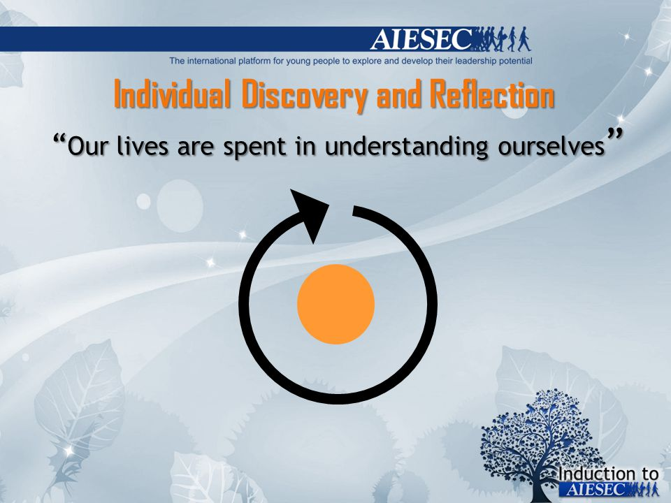 Individual Discovery and Reflection Our lives are spent in understanding ourselves