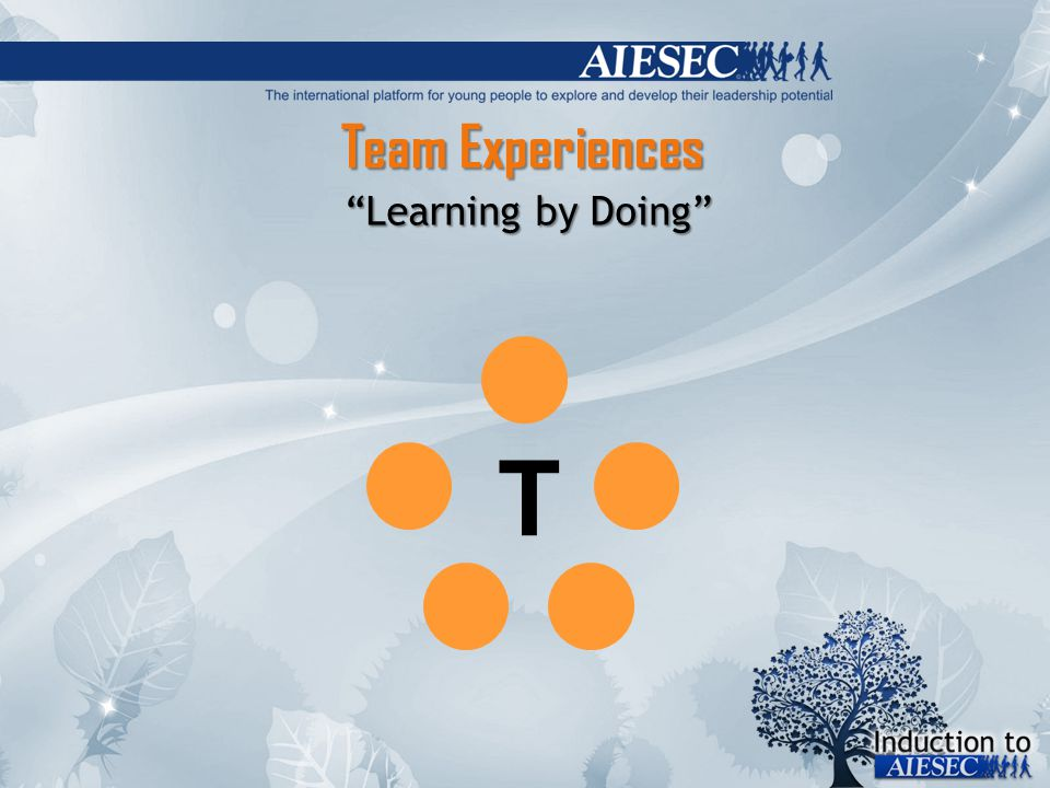 Team Experiences Learning by Doing T