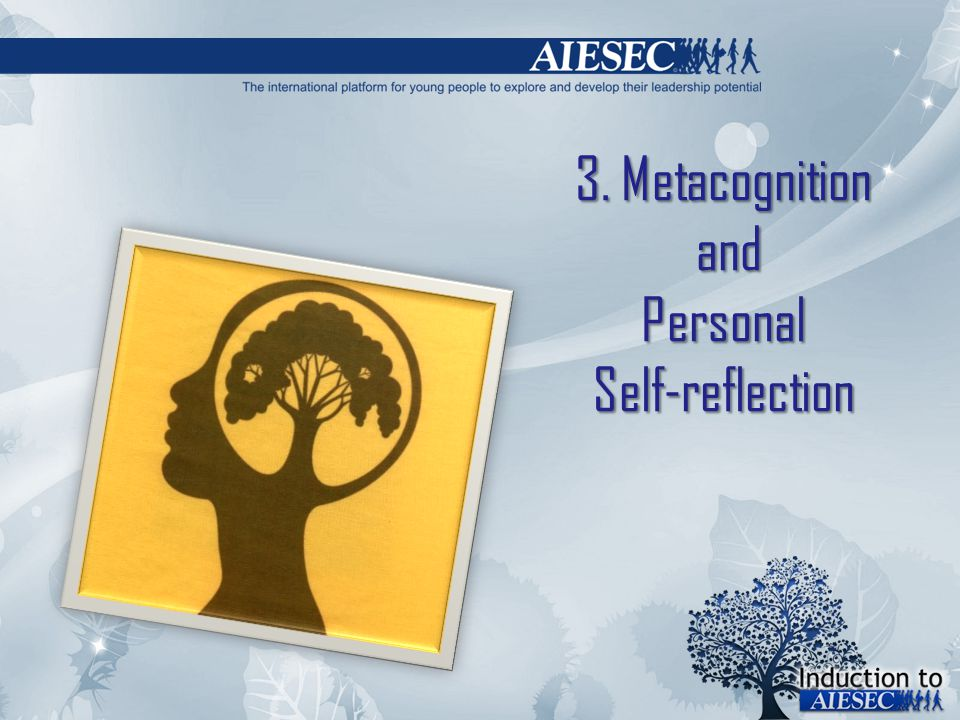 3. Metacognition and Personal Self-reflection