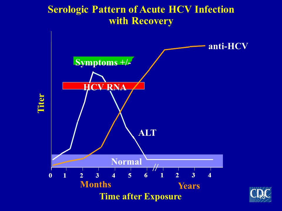 Serologic Pattern of Acute HCV Infection with Recovery Symptoms +/- Time after Exposure Titer anti-HCV ALT Normal 012345 61234 Years Months HCV RNA 13