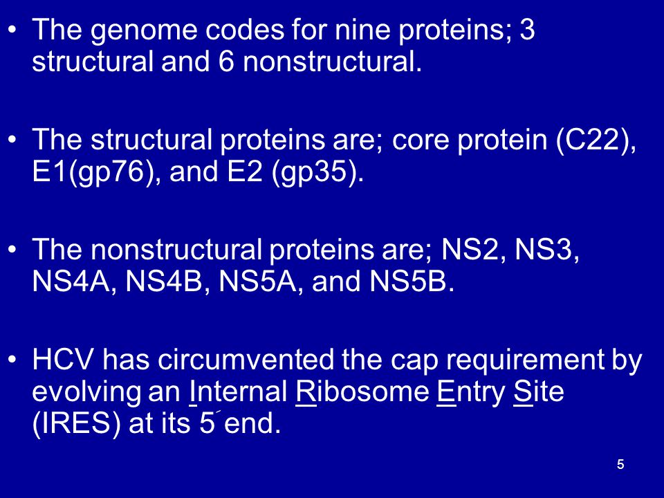 The genome codes for nine proteins; 3 structural and 6 nonstructural. The structural proteins are; core protein (C22), E1(gp76), and E2 (gp35). The no