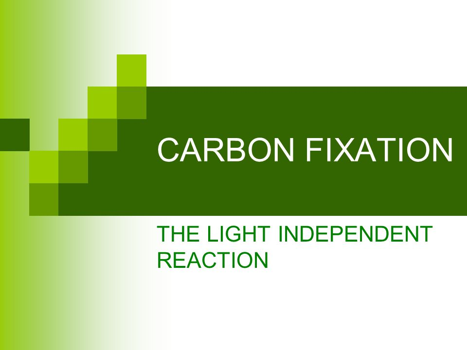 CARBON FIXATION THE LIGHT INDEPENDENT REACTION
