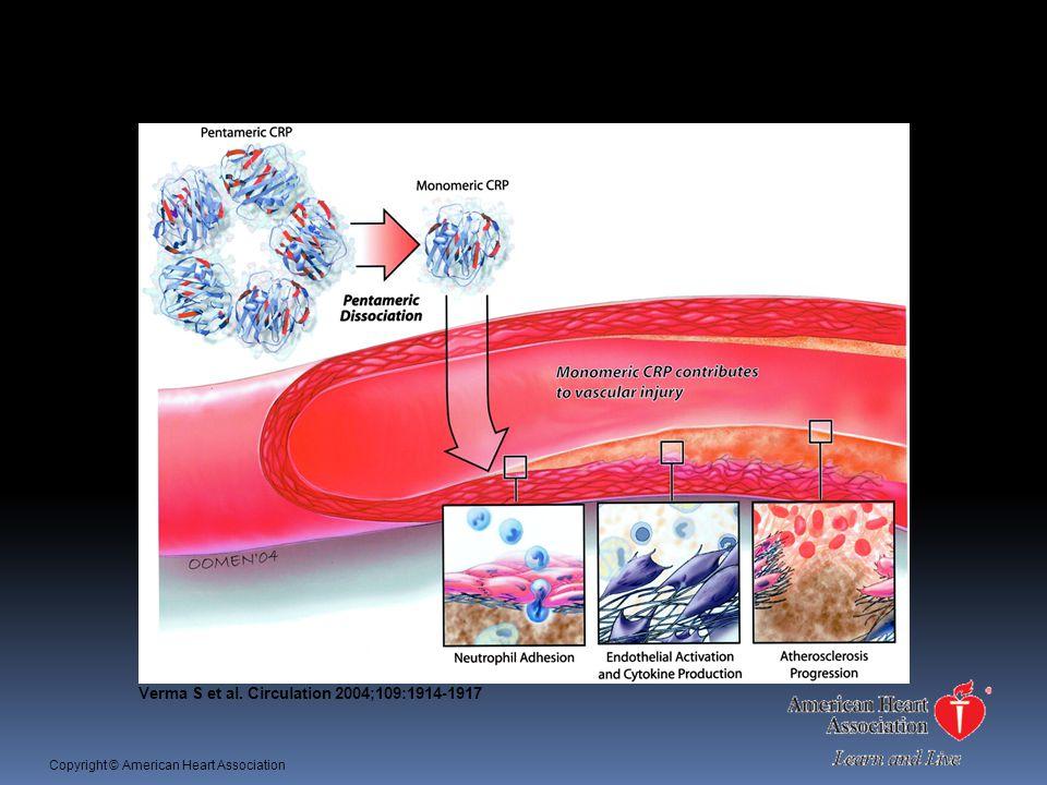 Atherosclerosis (1) Verma S et al. Circulation 2004;109:1914-1917 Copyright © American Heart Association