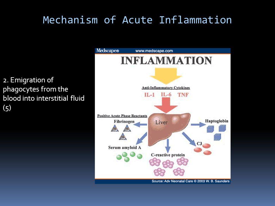 Mechanism of Acute Inflammation