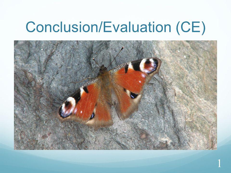 Conclusion/Evaluation (CE) 1