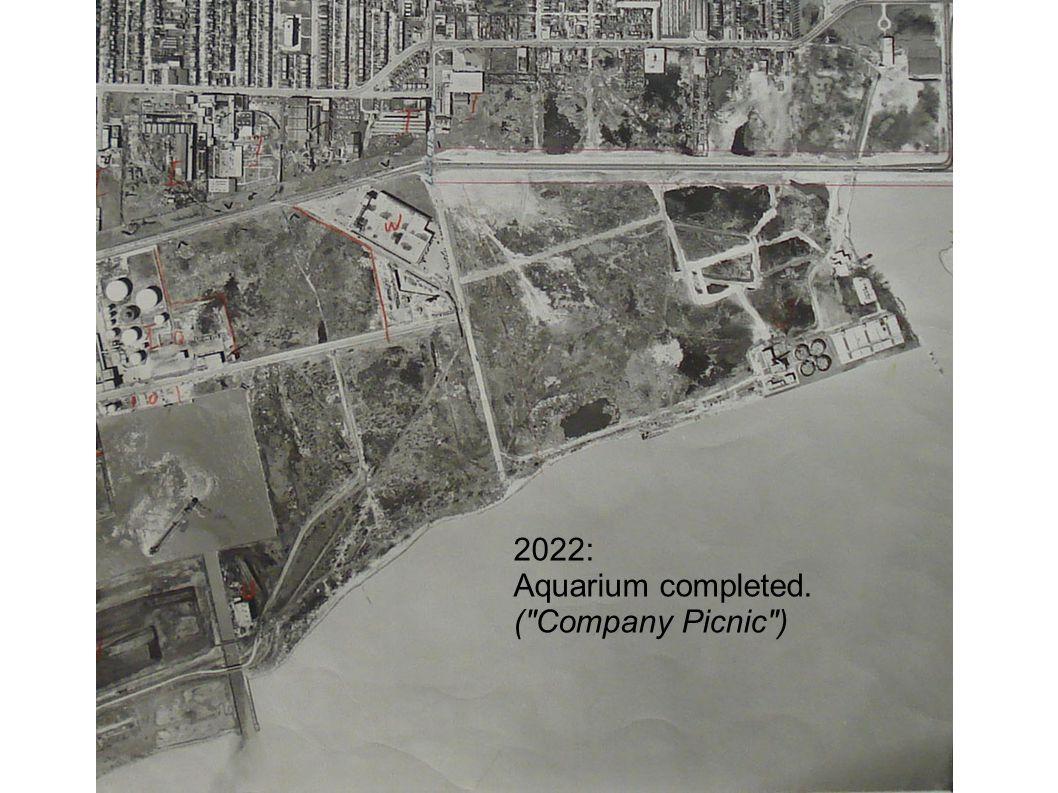 2022: Aquarium completed. ( Company Picnic )