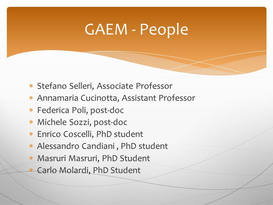  Stefano Selleri, Associate Professor  Annamaria Cucinotta, Assistant Professor  Federica Poli, post-doc  Michele Sozzi, post-doc  Enrico Coscell