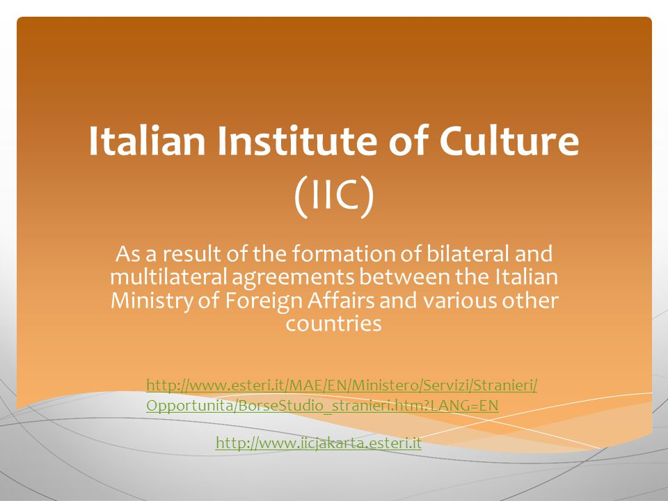 Italian Institute of Culture (IIC) As a result of the formation of bilateral and multilateral agreements between the Italian Ministry of Foreign Affairs and various other countries http://www.esteri.it/MAE/EN/Ministero/Servizi/Stranieri/ Opportunita/BorseStudio_stranieri.htm LANG=EN http://www.iicjakarta.esteri.it