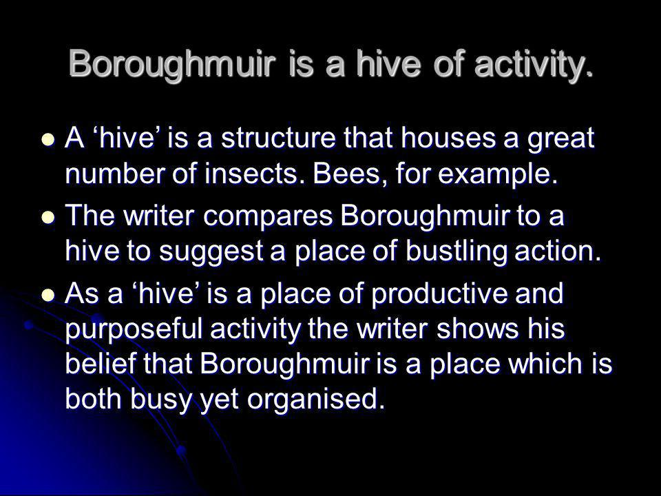 Boroughmuir is a hive of activity. A 'hive' is a structure that houses a great number of insects. Bees, for example. A 'hive' is a structure that hous
