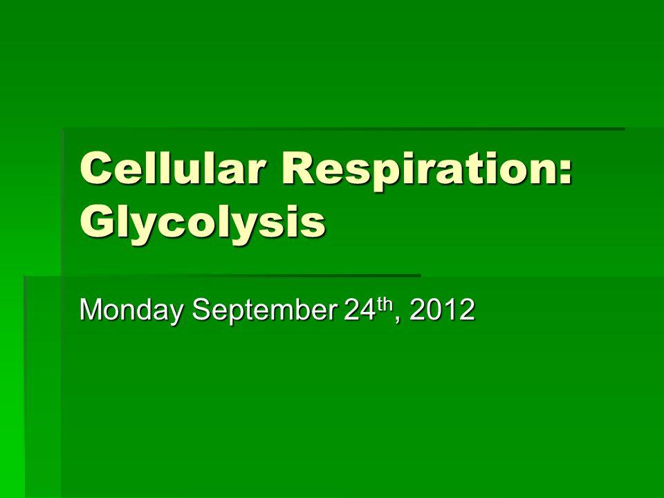 Cellular Respiration: Glycolysis Monday September 24 th, 2012