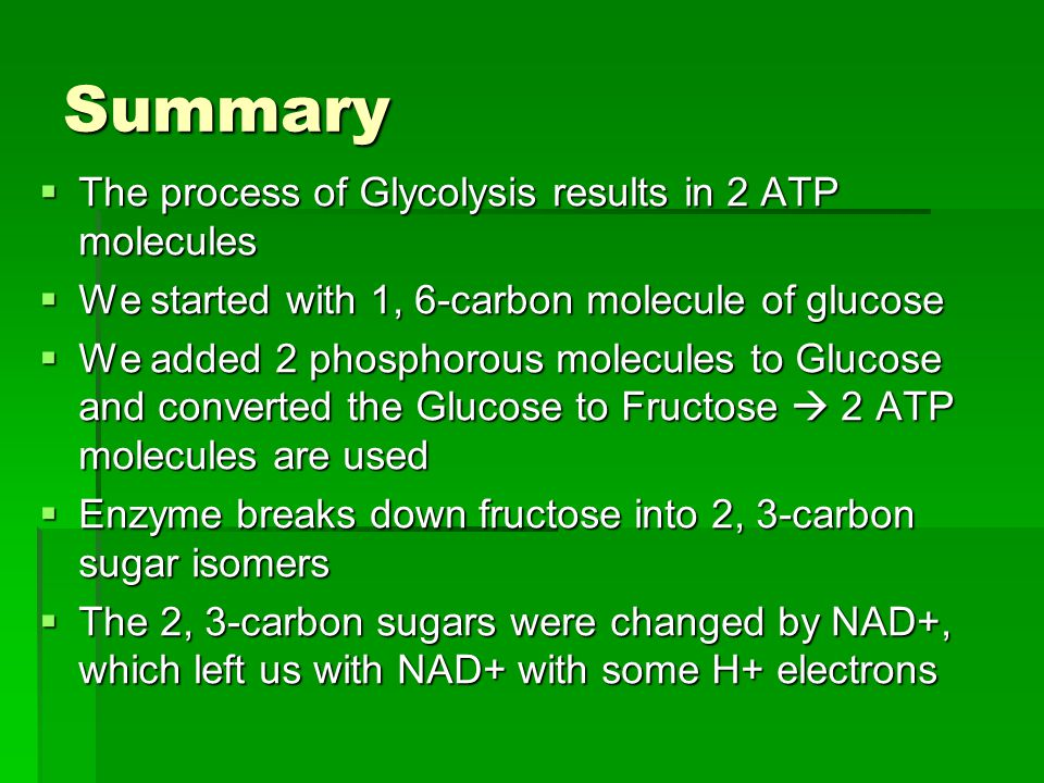 Summary  The process of Glycolysis results in 2 ATP molecules  We started with 1, 6-carbon molecule of glucose  We added 2 phosphorous molecules to