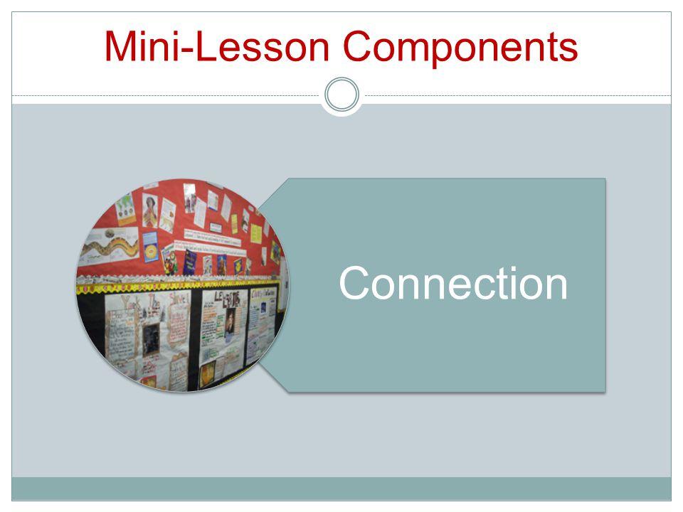 Mini-Lesson Components Connection
