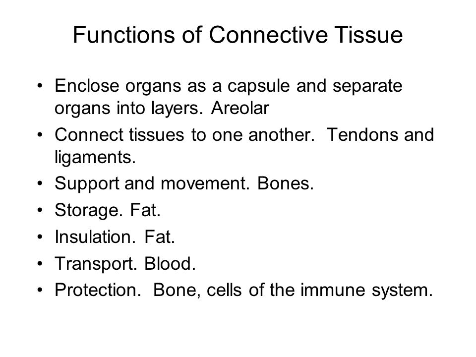Functions of Connective Tissue Enclose organs as a capsule and separate organs into layers.