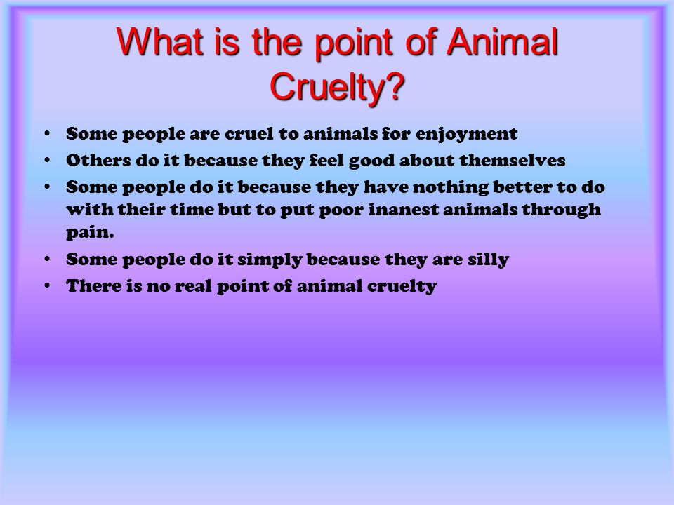 What is the point of Animal Cruelty? Some people are cruel to animals for enjoyment Others do it because they feel good about themselves Some people d
