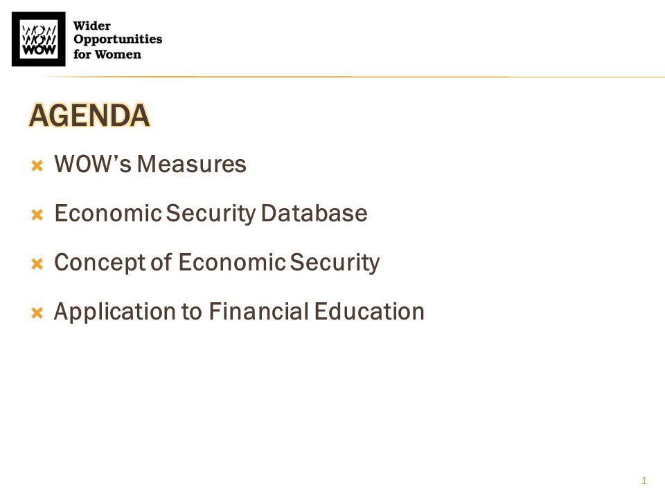  WOW's Measures  Economic Security Database  Concept of Economic Security  Application to Financial Education 1