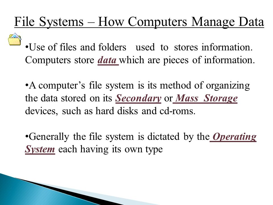  The three basic elements of the Windows XP file system are: ◦ File ◦ Folder or Directory ◦ Drive or Partition
