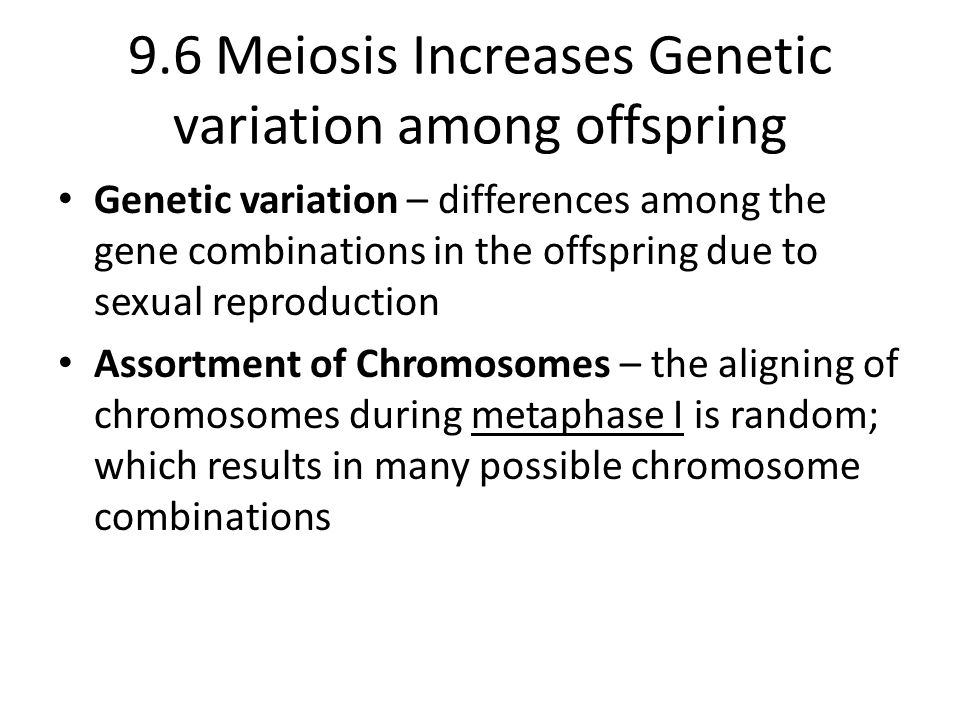 9.6 Meiosis Increases Genetic variation among offspring Genetic variation – differences among the gene combinations in the offspring due to sexual rep