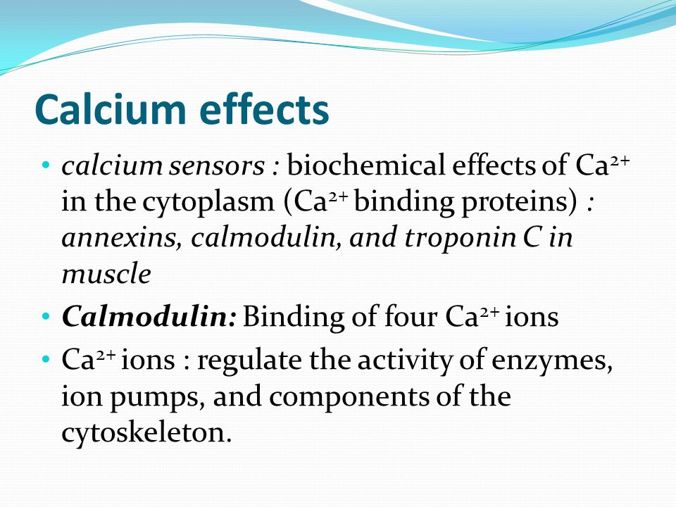 Calcium effects calcium sensors : biochemical effects of Ca 2+ in the cytoplasm (Ca 2+ binding proteins) : annexins, calmodulin, and troponin C in mus