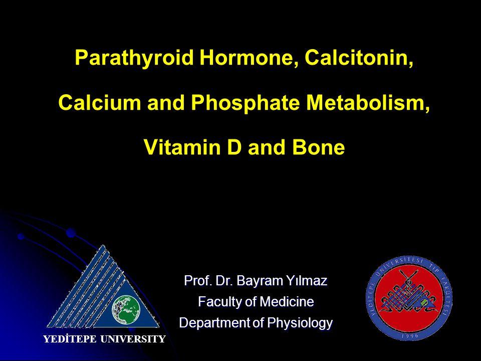 Parathyroid Hormone, Calcitonin, Calcium and Phosphate Metabolism, Vitamin D and Bone Prof.