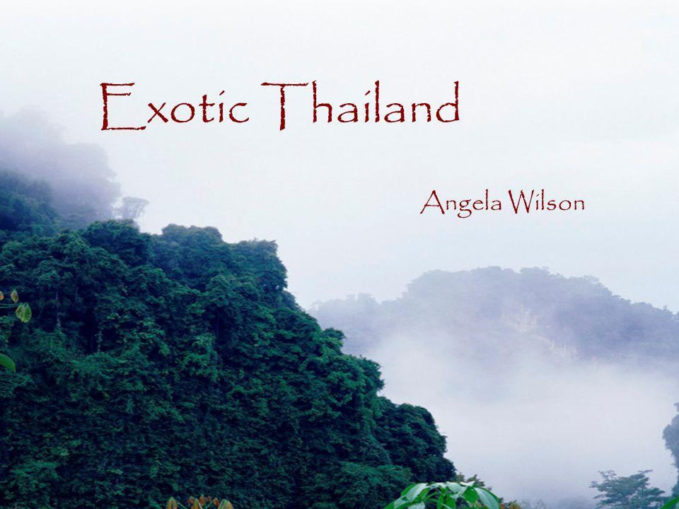 Exotic Thailand Angela Wilson 1 Angela Sanders