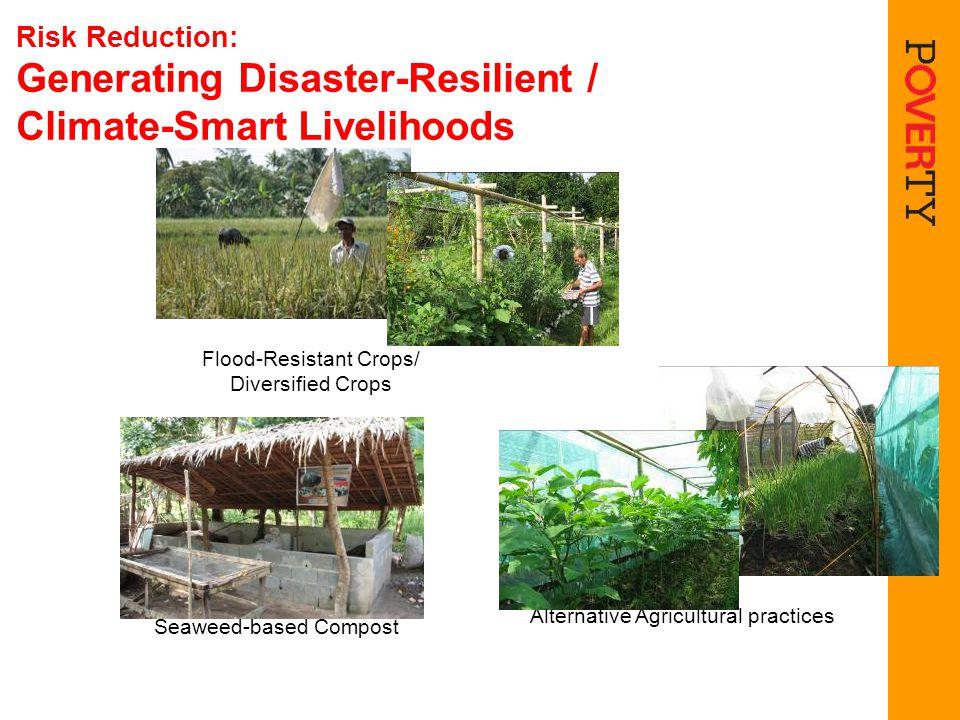 Risk Reduction: Generating Disaster-Resilient / Climate-Smart Livelihoods Seaweed-based CompostFlood-Resistant Crops/ Diversified Crops Alternative Ag