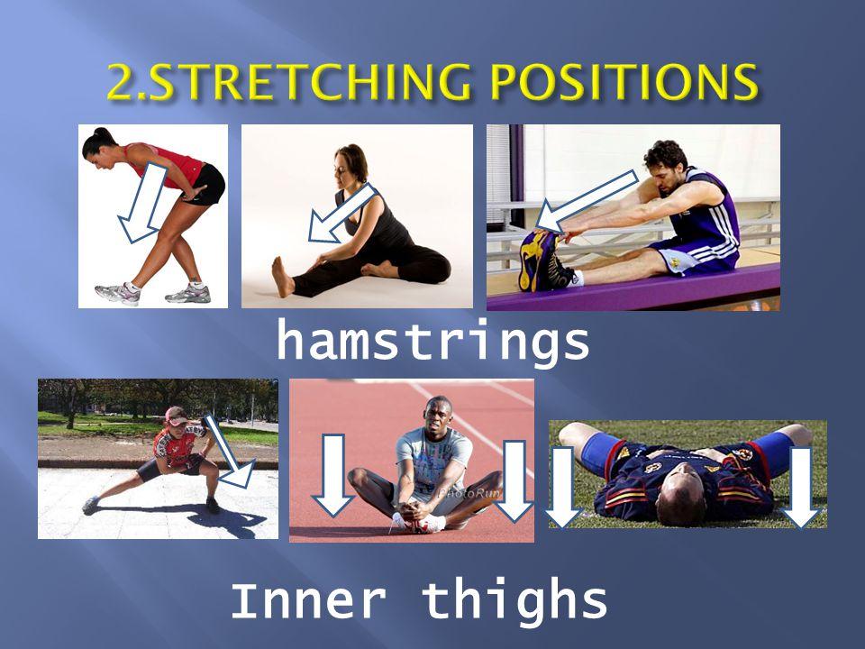 hamstrings Inner thighs