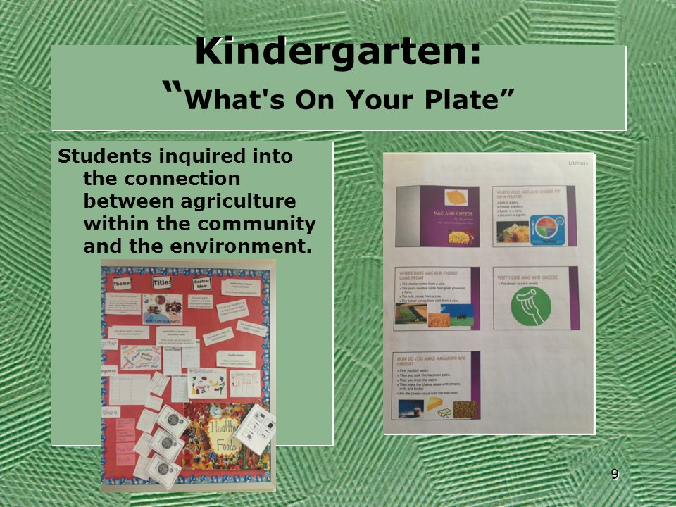 """Kindergarten: """" What's On Your Plate"""" Students inquired into the connection between agriculture within the community and the environment. 9"""