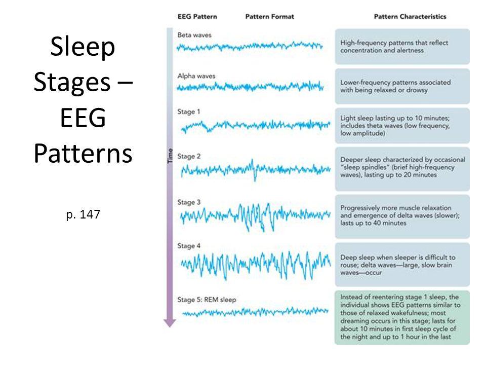 Sleep Stages – EEG Patterns p. 147