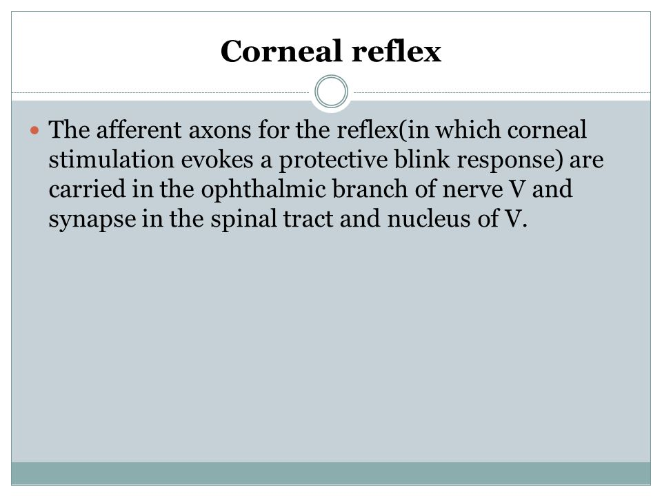 Corneal reflex The afferent axons for the reflex(in which corneal stimulation evokes a protective blink response) are carried in the ophthalmic branch