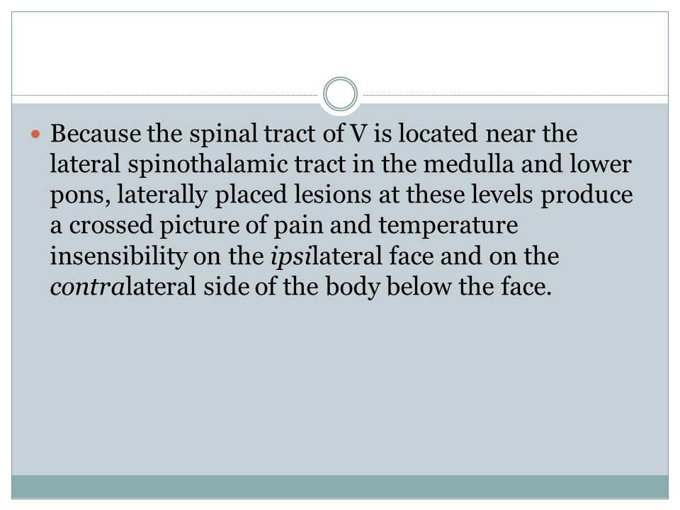 Because the spinal tract of V is located near the lateral spinothalamic tract in the medulla and lower pons, laterally placed lesions at these levels