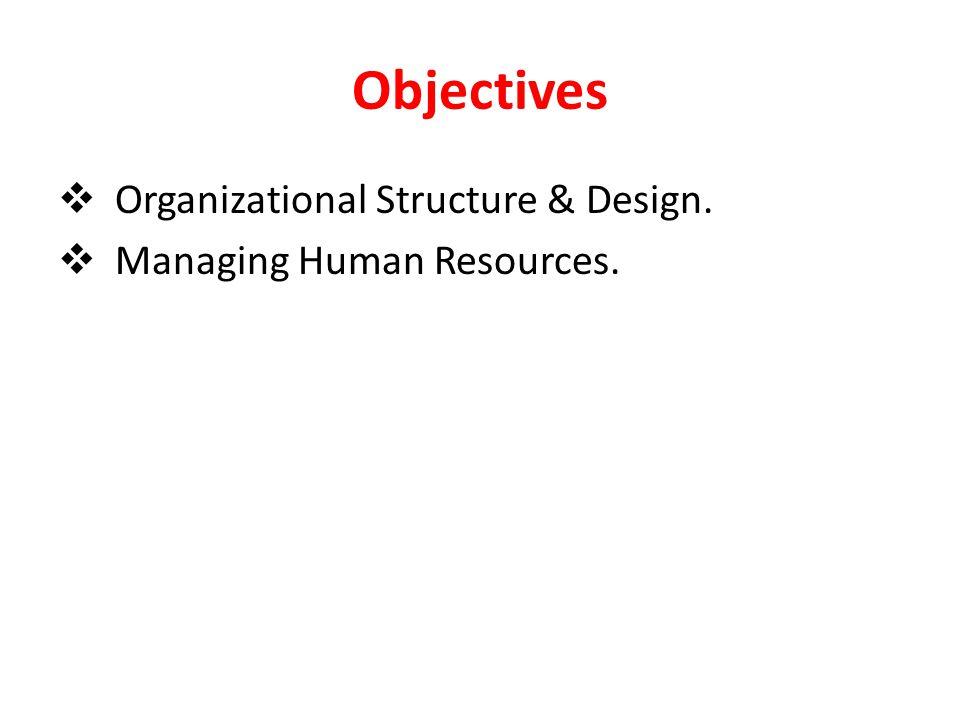 Example of a Matrix Organization