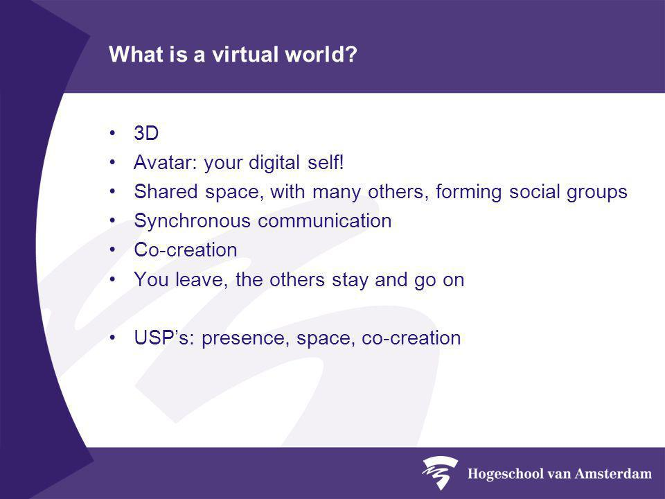 Learning in an virtual world ?.