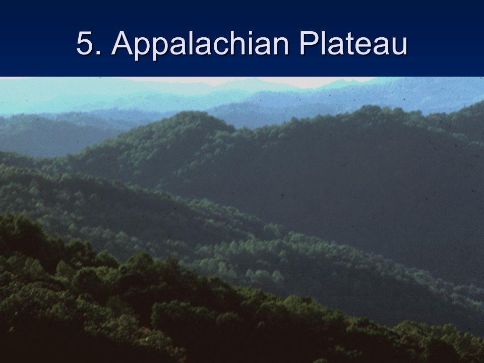 5. Appalachian Plateau