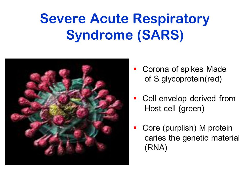 Severe Acute Respiratory Syndrome (SARS)  Corona of spikes Made of S glycoprotein(red)  Cell envelop derived from Host cell (green)  Core (purplish) M protein caries the genetic material (RNA)
