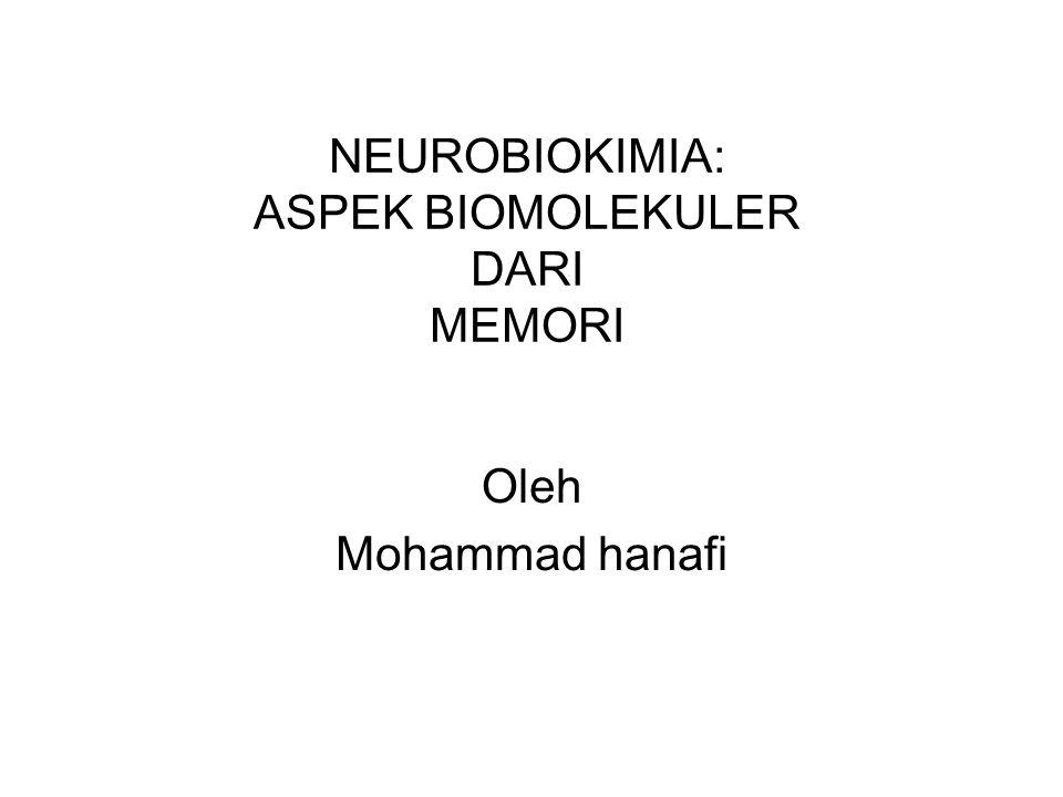 NEUROBIOKIMIA: ASPEK BIOMOLEKULER DARI MEMORI Oleh Mohammad hanafi