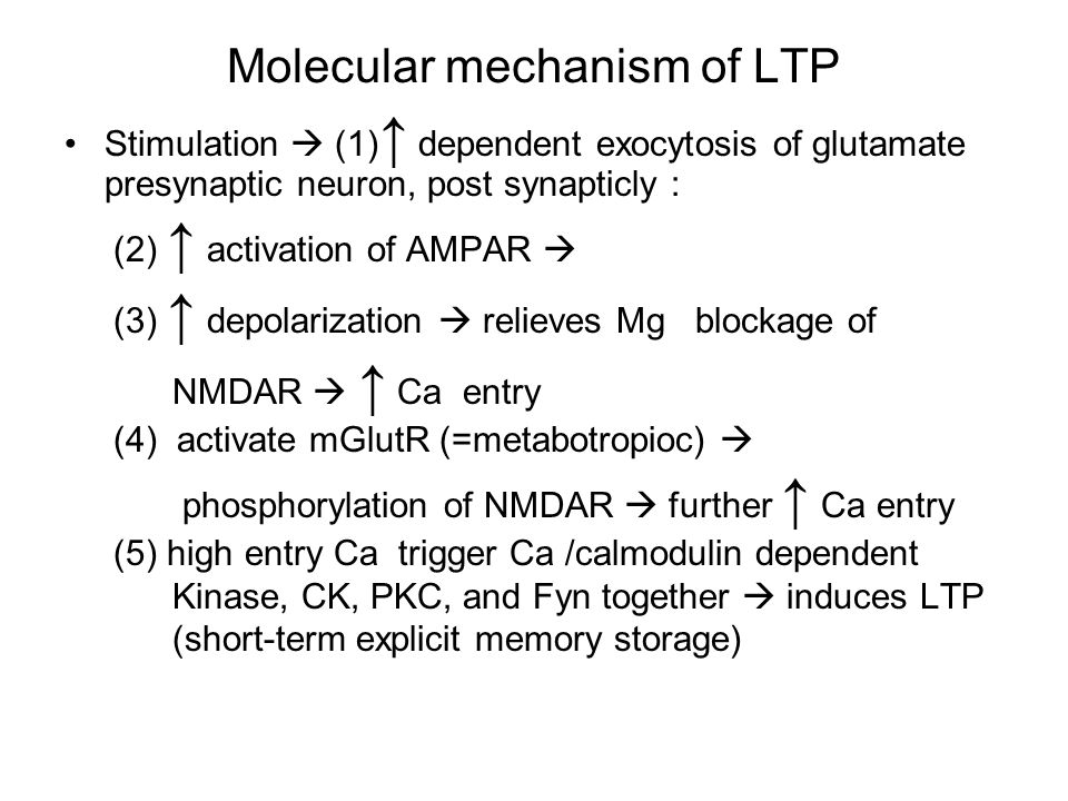 Molecular mechanism of LTP Stimulation  (1) ↑ dependent exocytosis of glutamate presynaptic neuron, post synapticly : (2) ↑ activation of AMPAR  (3) ↑ depolarization  relieves Mg blockage of NMDAR  ↑ Ca entry (4) activate mGlutR (=metabotropioc)  phosphorylation of NMDAR  further ↑ Ca entry (5) high entry Ca trigger Ca /calmodulin dependent Kinase, CK, PKC, and Fyn together  induces LTP (short-term explicit memory storage)
