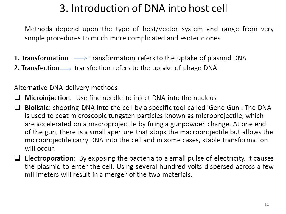 3. Introduction of DNA into host cell Methods depend upon the type of host/vector system and range from very simple procedures to much more complicate