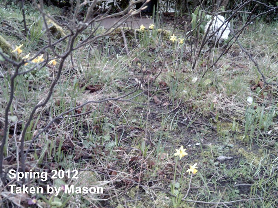 Spring 2012 Taken by Mason