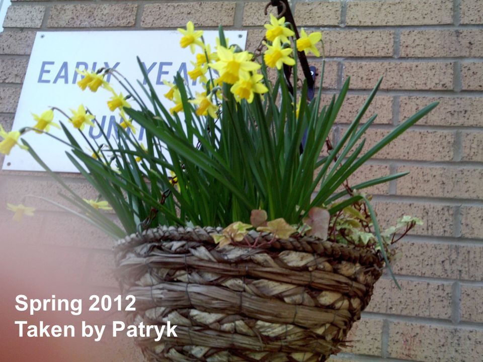 Spring 2012 Taken by Patryk