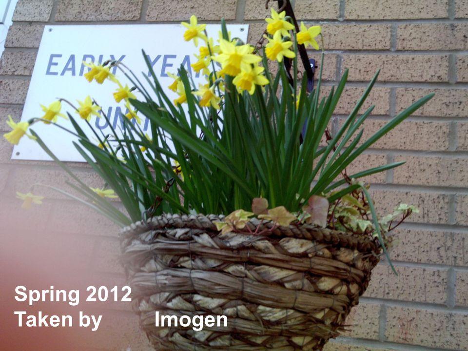 Spring 2012 Taken by Imogen