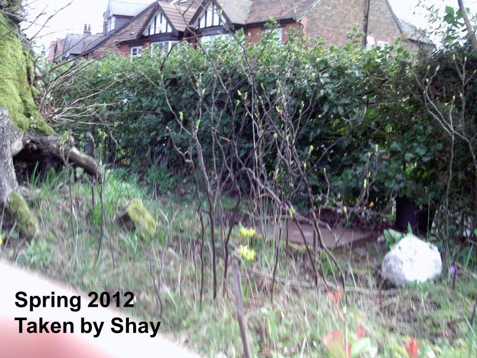 Spring 2012 Taken by Shay