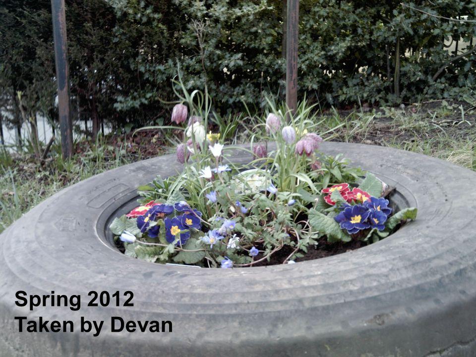 Spring 2012 Taken by Devan