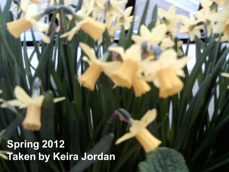 Spring 2012 Taken by Keira Jordan