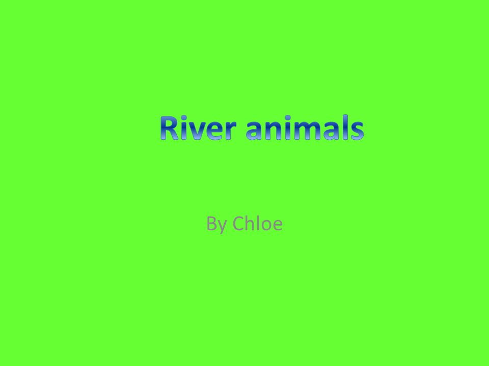 Otters live on land and in rivers.They can bite and fight with their tails.