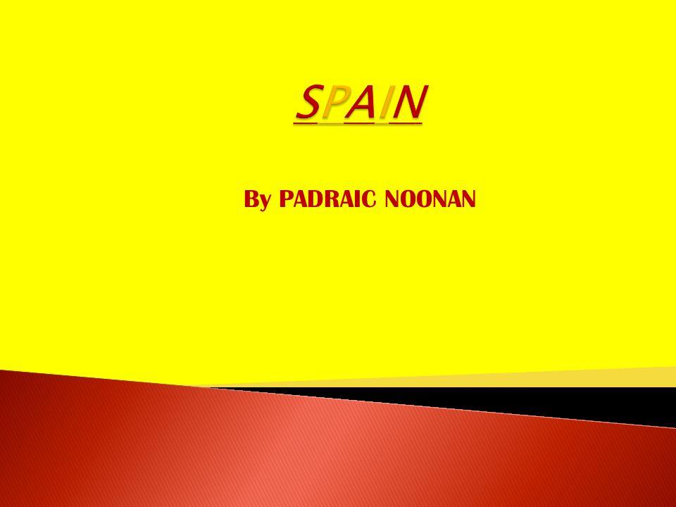 By PADRAIC NOONAN